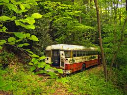 Bus abandoned in the woods